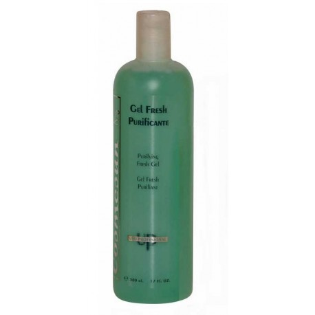 GEL FRESH PURIFICANTE 500 ML.
